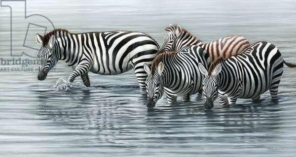 Waterhole zebras, 2013, acrylic on board