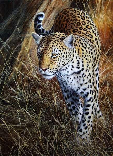 Leopard, 2013, acrylic on board