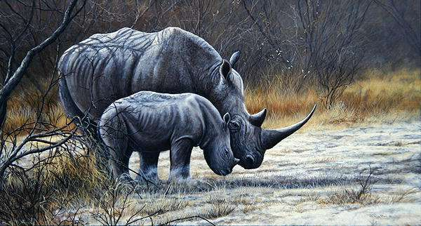 White rhino and calf, 1998 (acrylic on board)