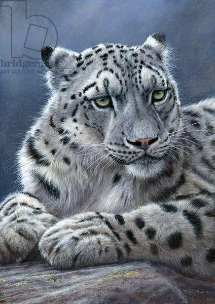 Snow leopard portrait, 2013, acrylic on board