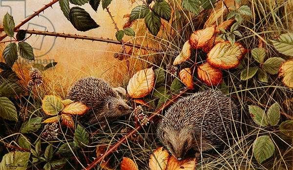 Autumn fruits, 1994 (acrylic on board)