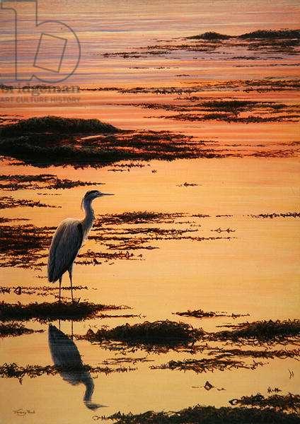 Evening Shore, Heron, 1994 (acrylic on board)