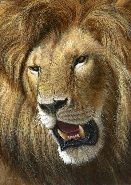 Lion, 2014, (acrylic on board)