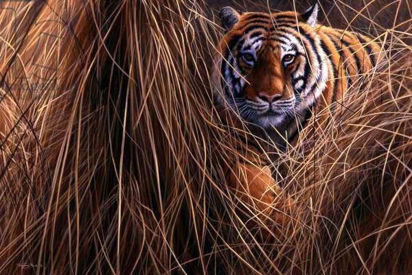 Tiger; 1998, acrylic on board