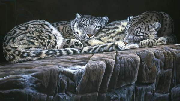 Snow leopards, 1999, acrylic on board