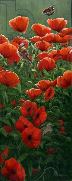 Summer Meadow, 2004 (acrylic on board)