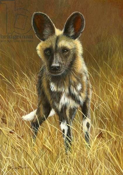 African wild dog, 2015, acrylic on board