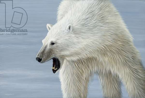 Bear!, 2007 (acrylic on board)