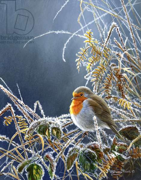 Hard frost - Robin, 2006 (acrylic on board)