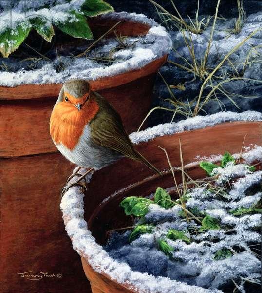 Robin, 2002 (acrylic on board)