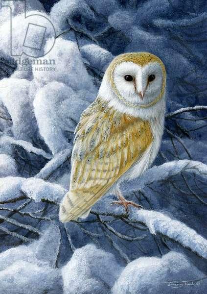 heavy snow - barn owl, 2017, acrylic on board
