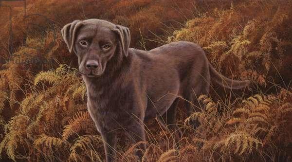 Good Companion, Choc Lab, 1996 (acrylic on board)