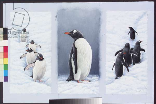 Penguin Highways, 2005 (acrylic on board)