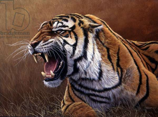 Final warning - tiger,1996, acrylic on board