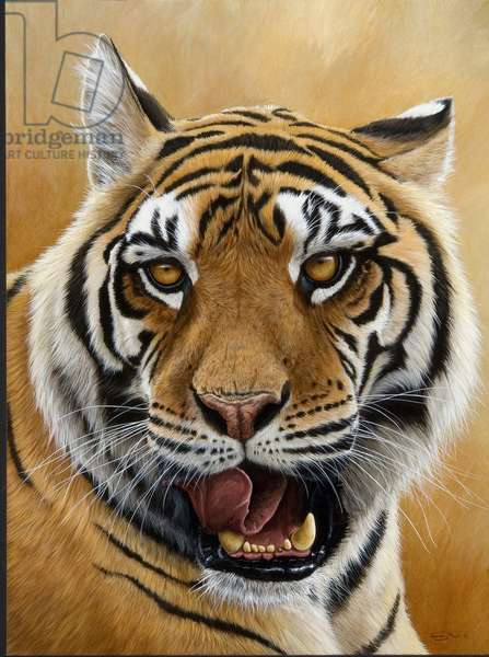 Next - Tiger, 2007 (acrylic on board)
