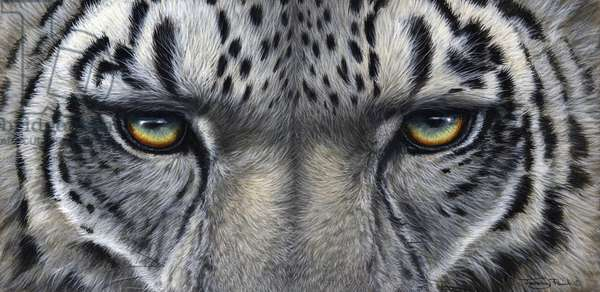 Cat's eyes - snow leopard, 2012, acrylic on board
