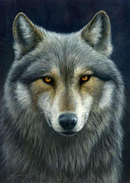 Look into my eyes, wolf, 2015, acrylic on board
