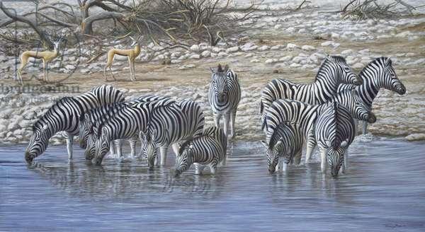 Waterhole Zebra, 1999 acrylic on board)