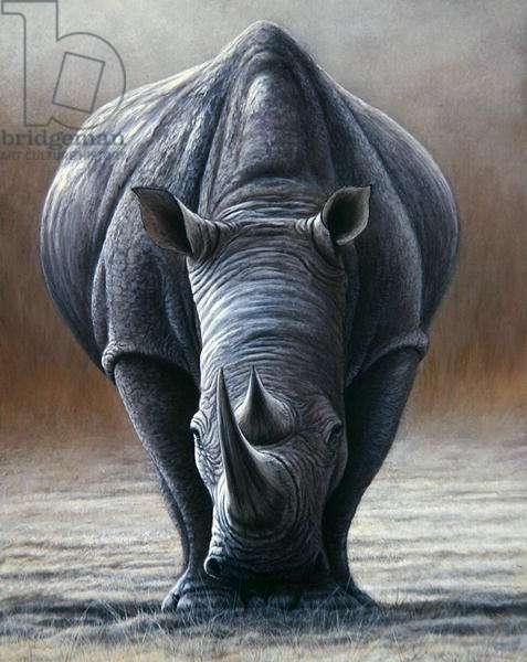 White Rhino, 2000 (acrylic on board)