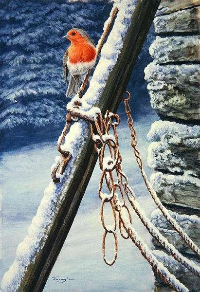 Old Harness, robin, 1992 (acrylic on board)