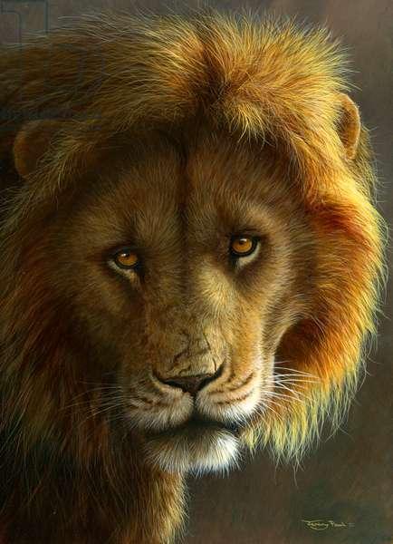 Golden Lion - Masai Mara, 2017, acrylic on board