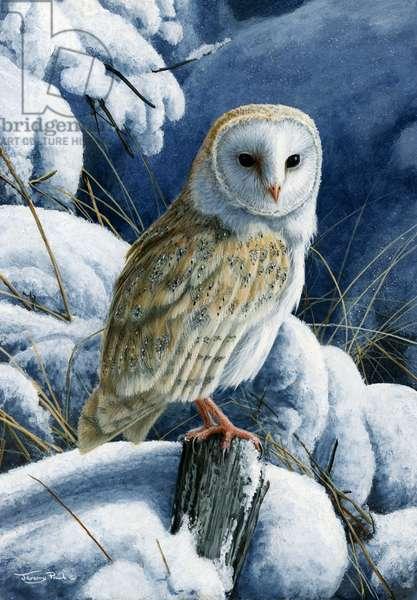 Heavy snow - barn owl, 2016, acrylic on board