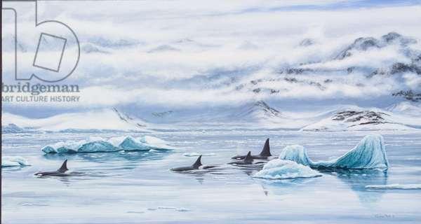 Orcas - Antarctic peninsula, 2005 (acrylic on board)