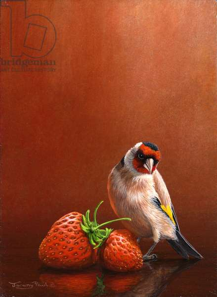 Goldfinch with two stawberries,2011, acylic on board
