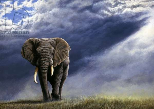 Approaching storm - elephant, 1998, acrylic on board