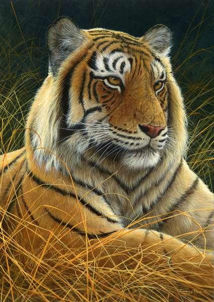 Siberian Tiger portrait, 2013, acrylic on board