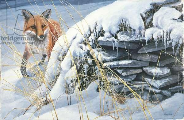 Something Stirred, Fox, 1992 (acrylic on board)