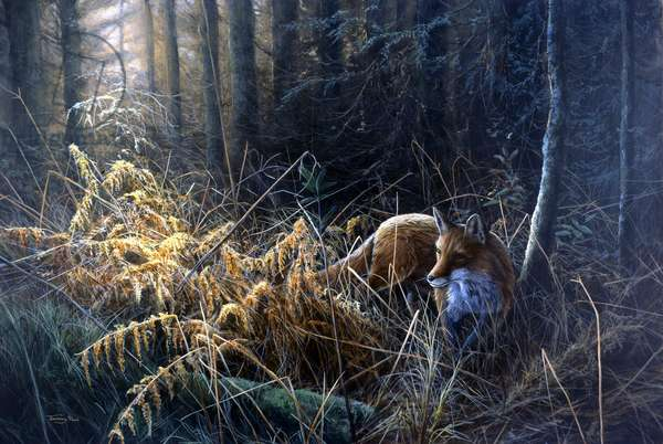 Evening light - fox, 1997, acrylic on board