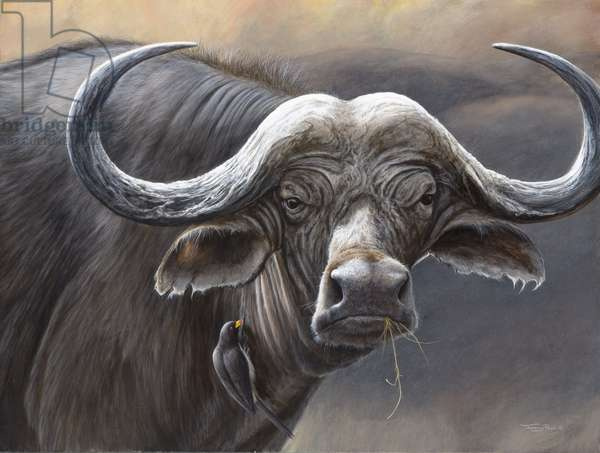 Buffalo and Red-billed Oxpecker, 2005 (acrylic on board)