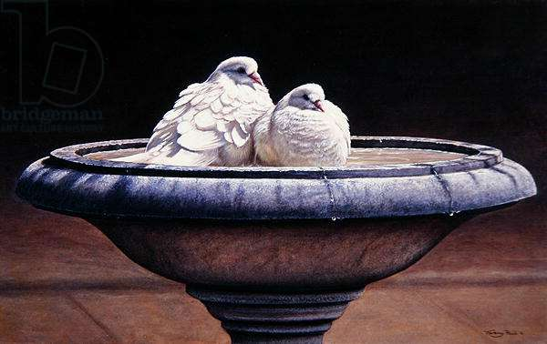 Two Doves, bird bath, 1997 (acrylic on board)