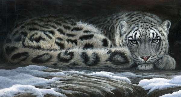 Snow shadows - snow leopard, acrylic on board 2016