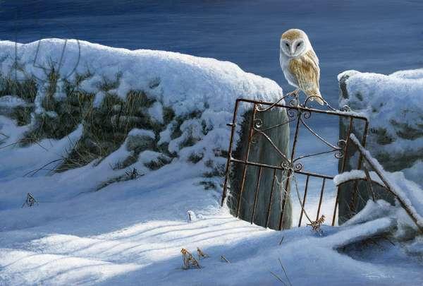 snowgate - barn owl, 2018, acrylic on board