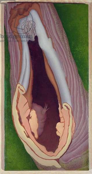 Tree Anatomy, 1942 (oil on wood panel)