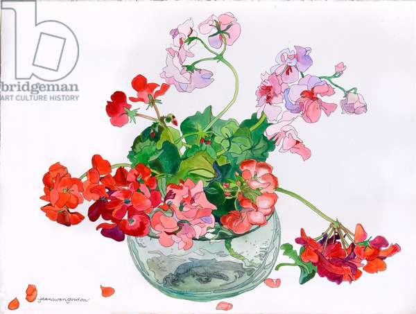 Geraniums at Ease in Glass Bowl (w/c & ink on paper)