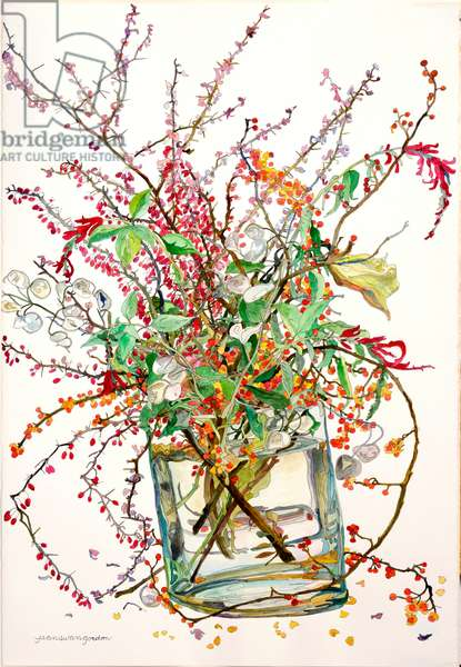 Bittersweet, Barberry, Honesty, Pineapple Sage, 1999 (w/c & ink on paper)