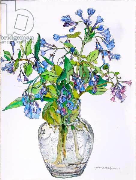 Virginia Blue Bells in Narrow Necked Vase, 2006 (w/c & ink on paper)