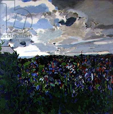 Morning Sky, Falmouth (oil on canvas)