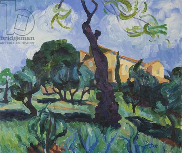 Olives at Pallieres, Provence, 2008 (oil on canvas)