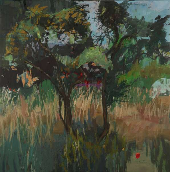 Gorse 1, 2010 (oil on canvas)