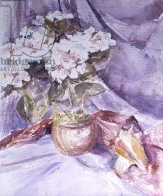 Flowers in a Terracotta Jug