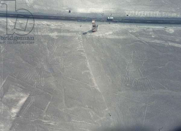 Tree and Hands with a viewing station in between, lines of the Nazca people, c.200BC-AD600 (photo)