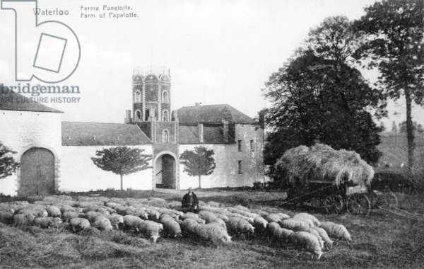 Farm of Papelotte, an important strategic site for Wellington during the battle of Waterloo, commemorative postcard,  c.1912 (photolitho)