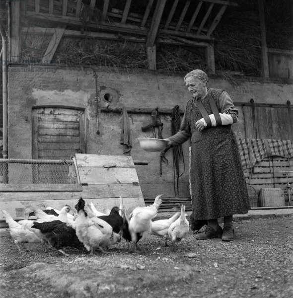 Switzerland Old Woman Chicken Feed (b/w photo)