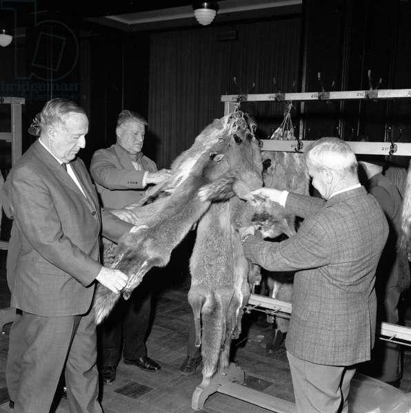 Switzerland Fur Market, 1970 (b/w photo)