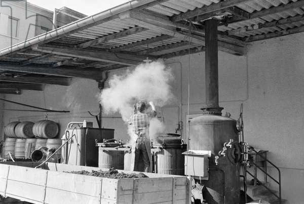 Switzerland Distillation (b/w photo)