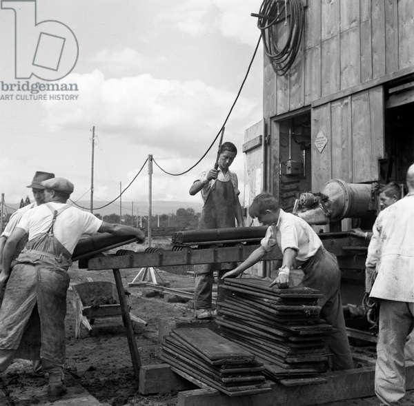 Switzerland World War II Peat, 1942 (b/w photo)